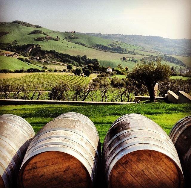 http://www.vinointorno.it/immagini_immobili/01-06-2017/1496308436-483-.jpg