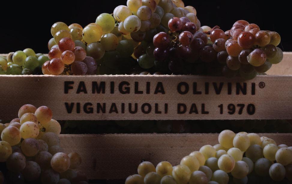 http://www.vinointorno.it/immagini_immobili/01-06-2017/1496336549-48-.jpg