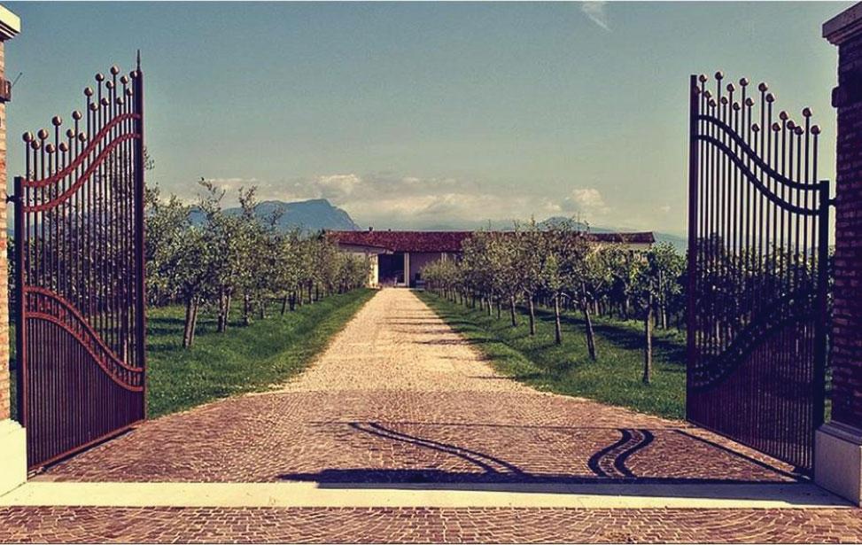 http://www.vinointorno.it/immagini_immobili/01-06-2017/1496336551-166-.jpg