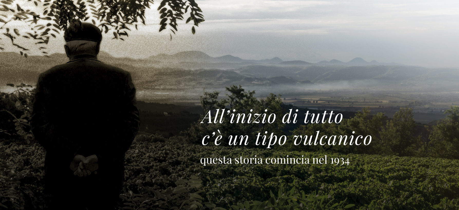 https://www.vinointorno.it/immagini_immobili/12-05-2017/1494605498-137-.png
