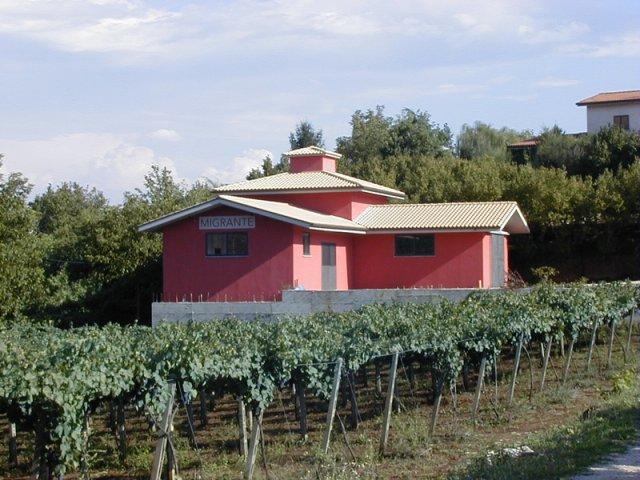 http://www.vinointorno.it/immagini_immobili/16-05-2017/1494951628-320-.jpg