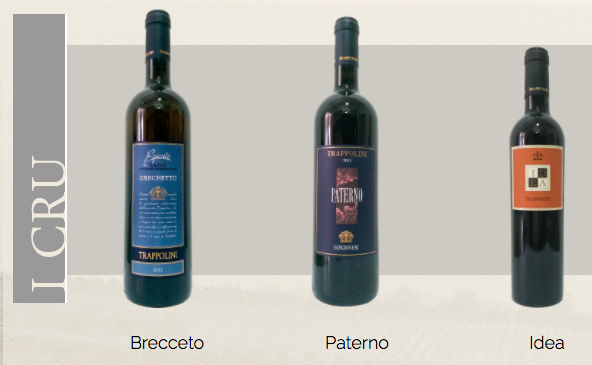 http://www.vinointorno.it/immagini_immobili/17-05-2017/1495008654-462-.png