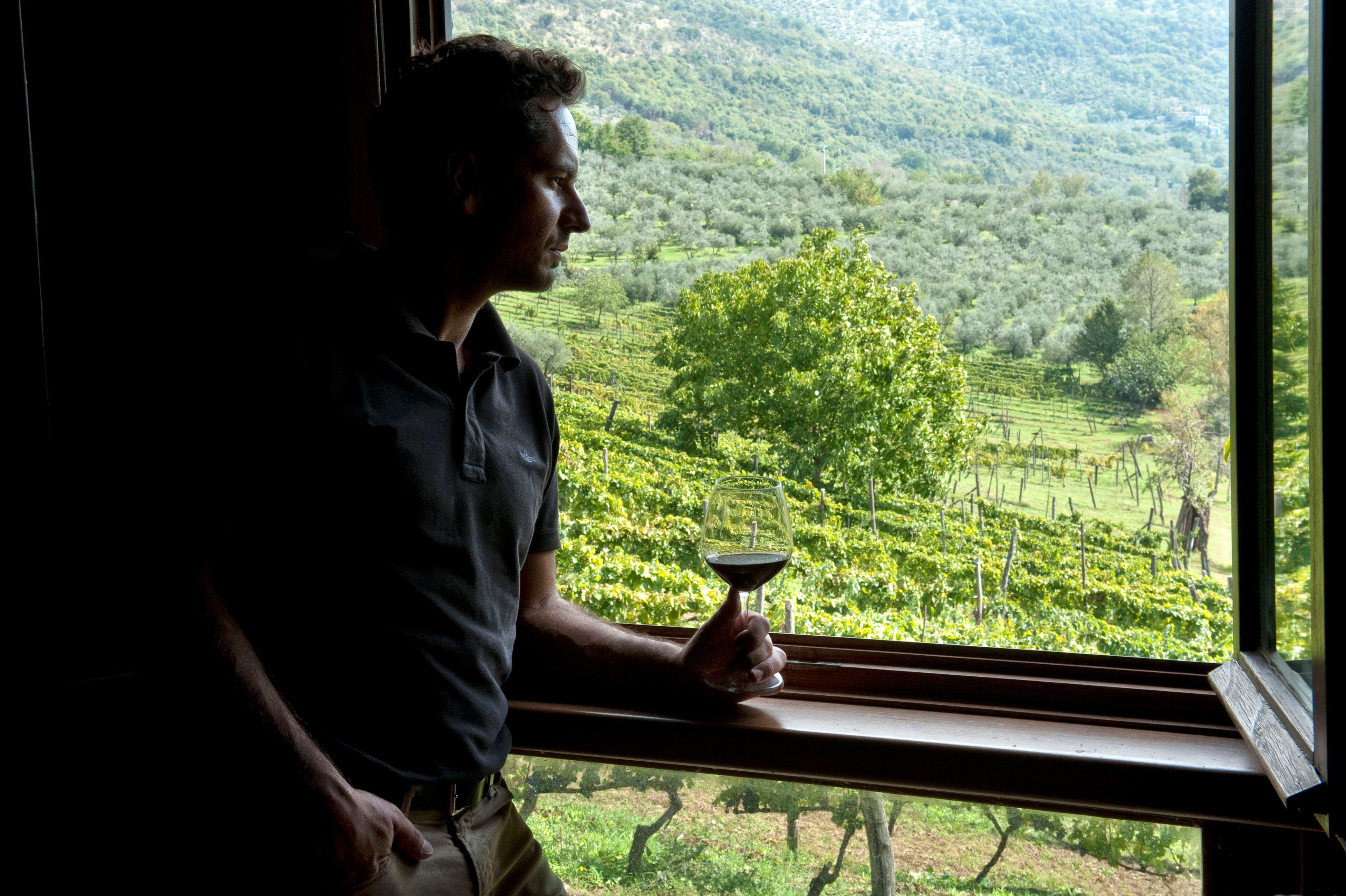 https://www.vinointorno.it/immagini_immobili/17-05-2017/1495017957-312-.jpg