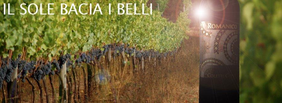https://www.vinointorno.it/immagini_immobili/18-05-2017/1495122967-409-.jpg