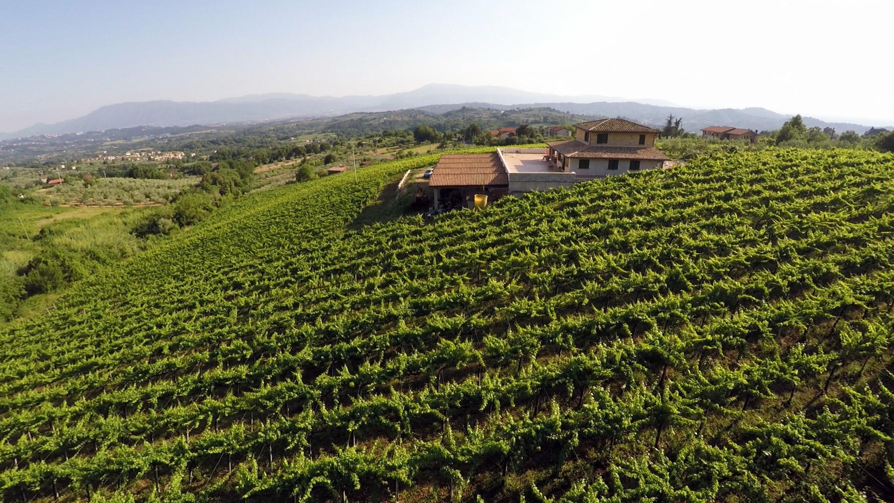 http://www.vinointorno.it/immagini_immobili/18-05-2017/1495125839-484-.jpg