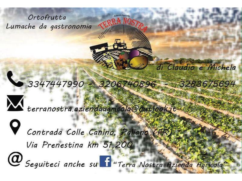 http://www.vinointorno.it/immagini_immobili/25-05-2017/1495731136-498-.jpg