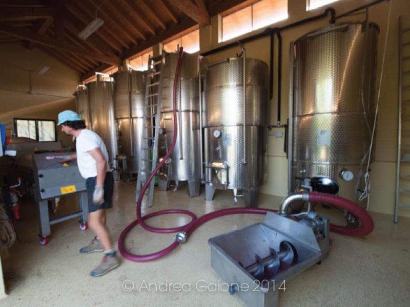 http://www.vinointorno.it/immagini_immobili/26-05-2017/1495787834-176-.jpg