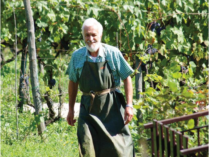 http://www.vinointorno.it/immagini_immobili/31-05-2017/1496227150-484-.jpg