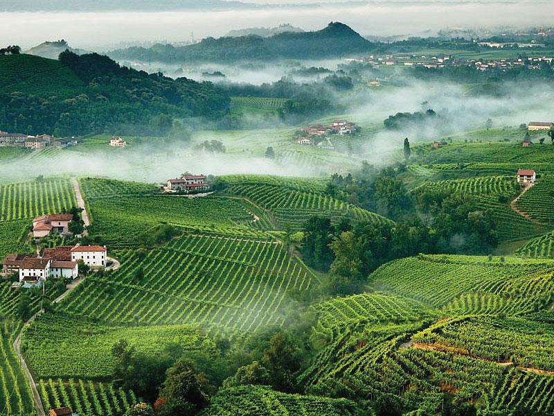 http://www.vinointorno.it/immagini_immobili/31-05-2017/1496251983-377-.jpg