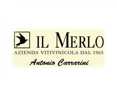 https://www.vinointorno.it/resizer/resize.php?url=https://www.vinointorno.it/immagini_immobili/01-06-2017/1496302549-325-.jpg&size=400x330c