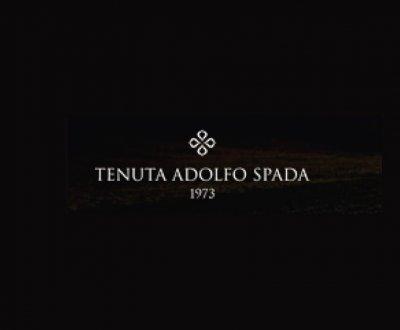 https://www.vinointorno.it/site/resizer/resize.php?url=https://www.vinointorno.it/immagini_immobili/01-06-2017/1496309622-291-.jpg&size=400x330c