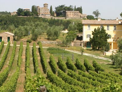 https://www.vinointorno.it/site/resizer/resize.php?url=https://www.vinointorno.it/immagini_immobili/06-06-2018/1528275737-84-.jpg&size=400x330c