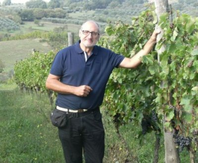 https://www.vinointorno.it/site/resizer/resize.php?url=https://www.vinointorno.it/immagini_immobili/20-06-2019/1561025046-44-.jpg&size=400x330c