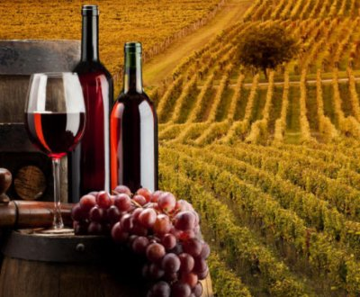 https://www.vinointorno.it/site/resizer/resize.php?url=https://www.vinointorno.it/immagini_immobili/31-05-2017/1496228345-357-.jpg&size=400x330c