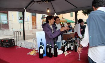 https://www.vinointorno.it/immagini_pagine/23-05-2017/1495561255-68-.jpg