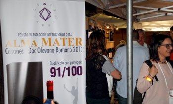 https://www.vinointorno.it/immagini_pagine/23-05-2017/1495563544-15-.jpg